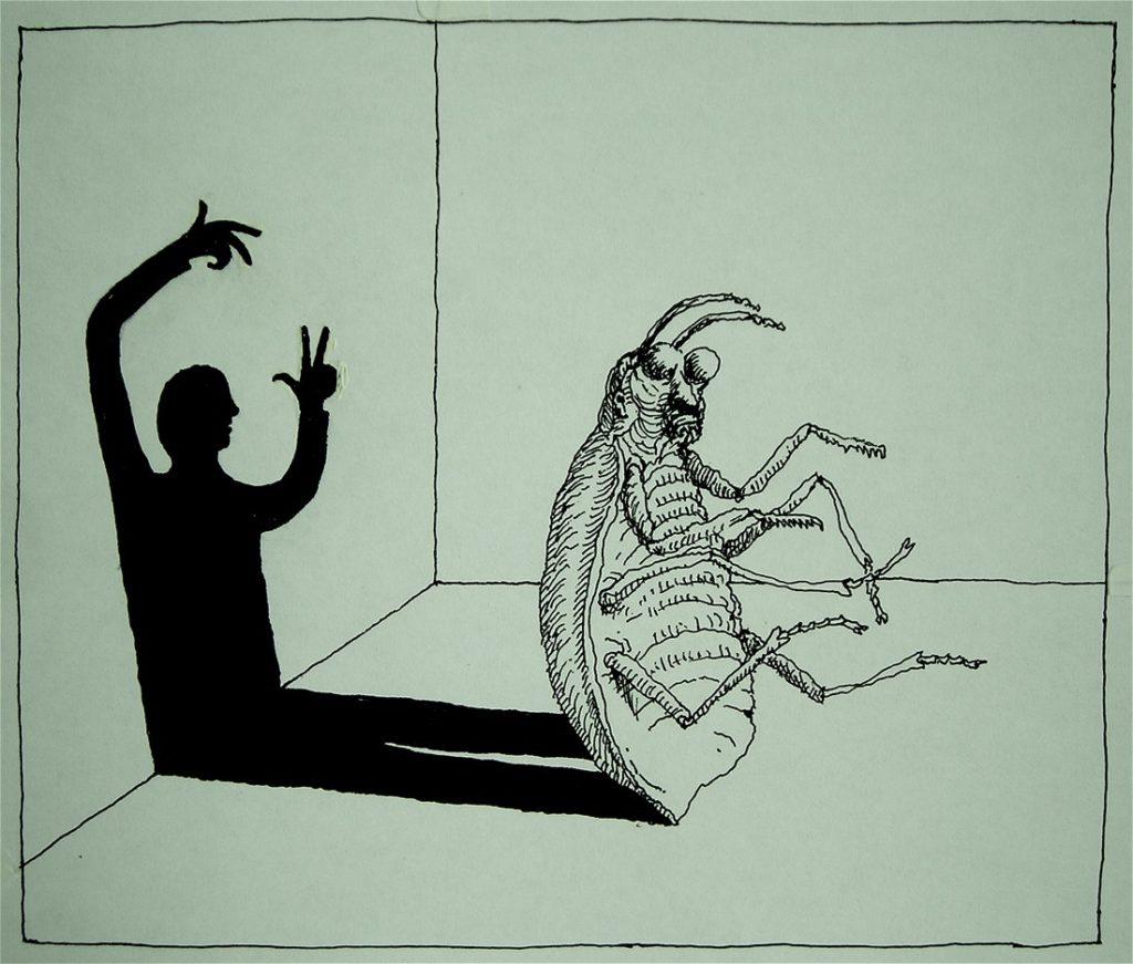 0 06RYUt0BAvENL rJ 1024x871 - Kafka e os animais