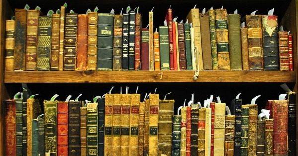 Literatura 2 - As razões da literatura