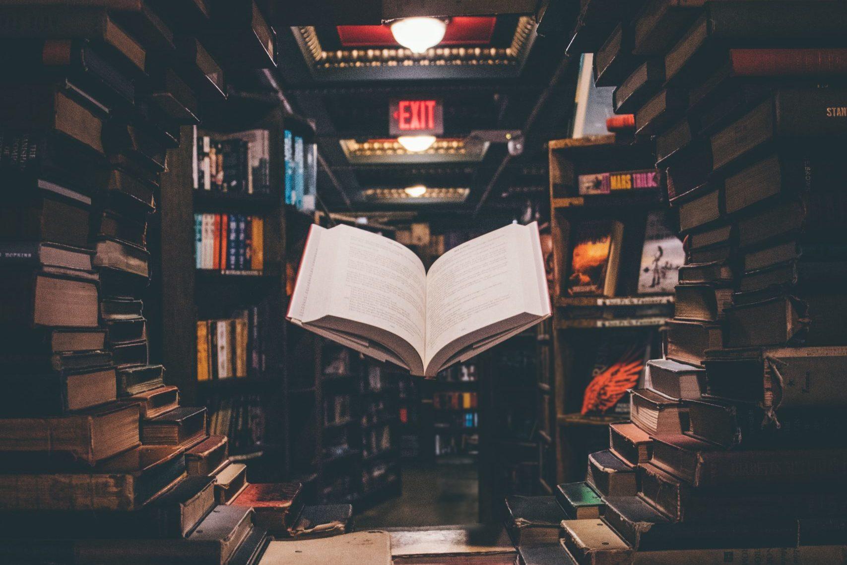 As razões da literatura