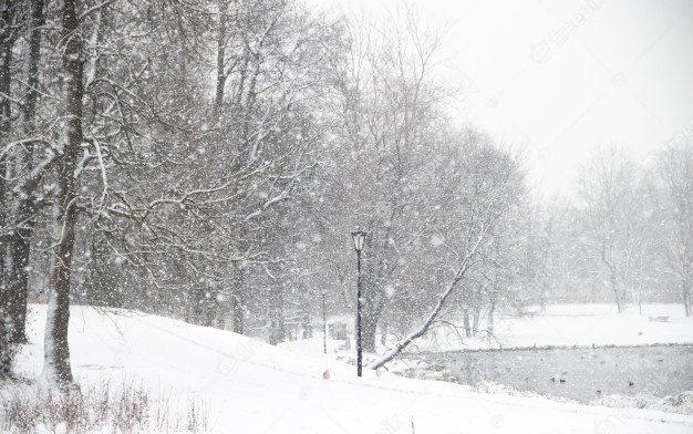 O crime que veio do frio, ou o Noir Nórdico